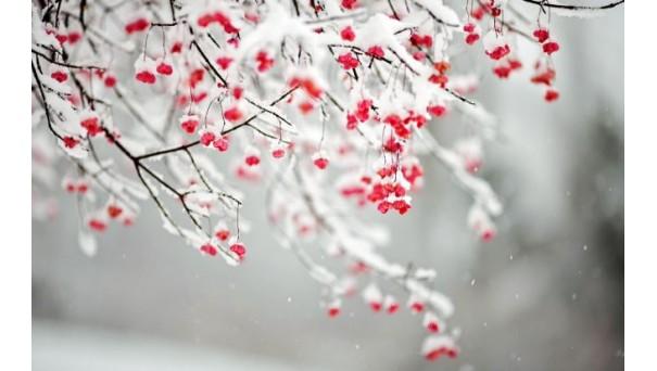Какие возможности нам дарит зима?